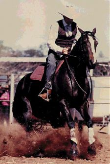 STAR CAROUSEL and Ian Francis in the Dry Pattern at the 1987 Cloncurry Stockmen's Challenge. The mare won both the Dry Work and the Campdraft Section on her way to victory in the event